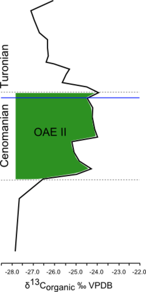Western Interior Seaway anoxia - The 13Corganic Curve for the duration of Oceanic Anoxic Event II (OAE II, highlighted in green)showing change in 13Corganic compared to a standard (Vienna Pee Dee Belemnite) through time (y-axis) across the Cenomanian-Turonian Stage Boundary (about 93.9 million years ago).