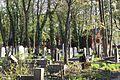 1403viki Cmentarz żydowski przy ul. Lotniczej. Foto Barbara Maliszewska.jpg