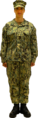 160803-N-RY232-001 - Navy Working Uniform (NWU) Type III.png