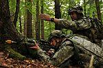 173rd Airborne Brigade Combat Team 111011-A-PU716-002.jpg