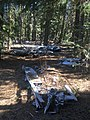 1947 Snell crash wreckage 04 - Fremont NF Oregon.jpg