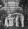 1957 SIA concours de carcasses-3-cliche Jean Joseph Weber - 27836372615.jpg