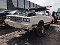 1985 Chevrolet Monte Carlo - Flickr - dave 7.jpg