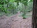 1e grafheuvel Bennekom (5).JPG