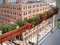 2007 flowerboxes 1296605637.jpg