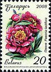2008. Stamp of Belarus 11-2008-06-10-pion.jpg