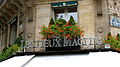 2008 windowbox Paris 4784771897.jpg