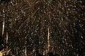 2010 07 14 bastille day fireworks 110 (4838881773).jpg