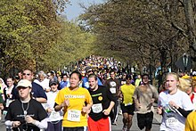 A large crowd runners in brightly colored shirts race down a wide street bordered by autumnal trees.