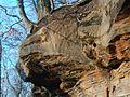 20120115Mithrasgrotte Saarbrucken2.jpg