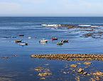 2014. O mar perante o Mosteiro de Santa María de Oia. Galiza O-08.jpg