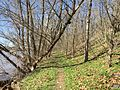 2015-04-12 15 31 51 View north on a trail along the Delaware River near Scudders Falls in Ewing, New Jersey.jpg