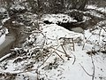 2016-02-15 08 39 18 View across a snowy Cain Branch of Cub Run in the Armfield Farm section of Chantilly, Fairfax County, Virginia.jpg