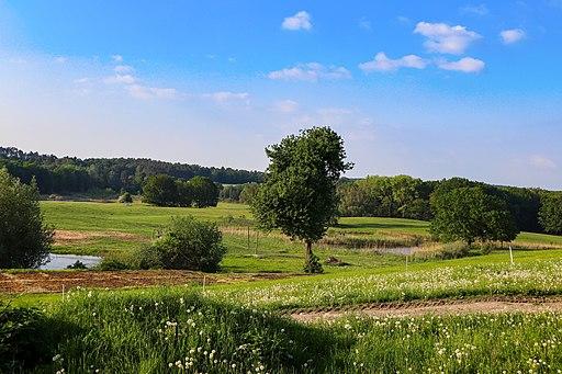 UNESCO-Biosphärenreservat Schorfheide-Chorin bei Barnim-Buckow.