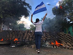 2018 Nicaraguan protests - woman and flag.jpg