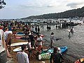 2019 Scotland Island Pittwater NSW Christmas Day pooch race 1.jpg