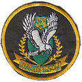 36th CDO BN unit patch.jpg