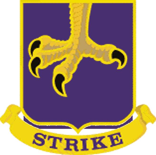 502 Parachute Infantry Regiment DUI