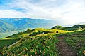 983, Taiwan, 花蓮縣富里鄉新興村 - panoramio (25).jpg