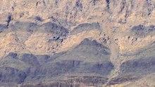 Arquivo: A-10 Exercício USAF.ogv