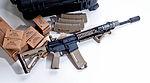 AR-15 Build IMG 9554 (5572764141).jpg