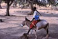 ASC Leiden - W.E.A. van Beek Collection - Dogon daily life 01 - A trader returns from the market on a donkey, Tireli, Mali 1980.jpg