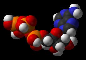 metabolismo lipoproteinas mejores ideas para