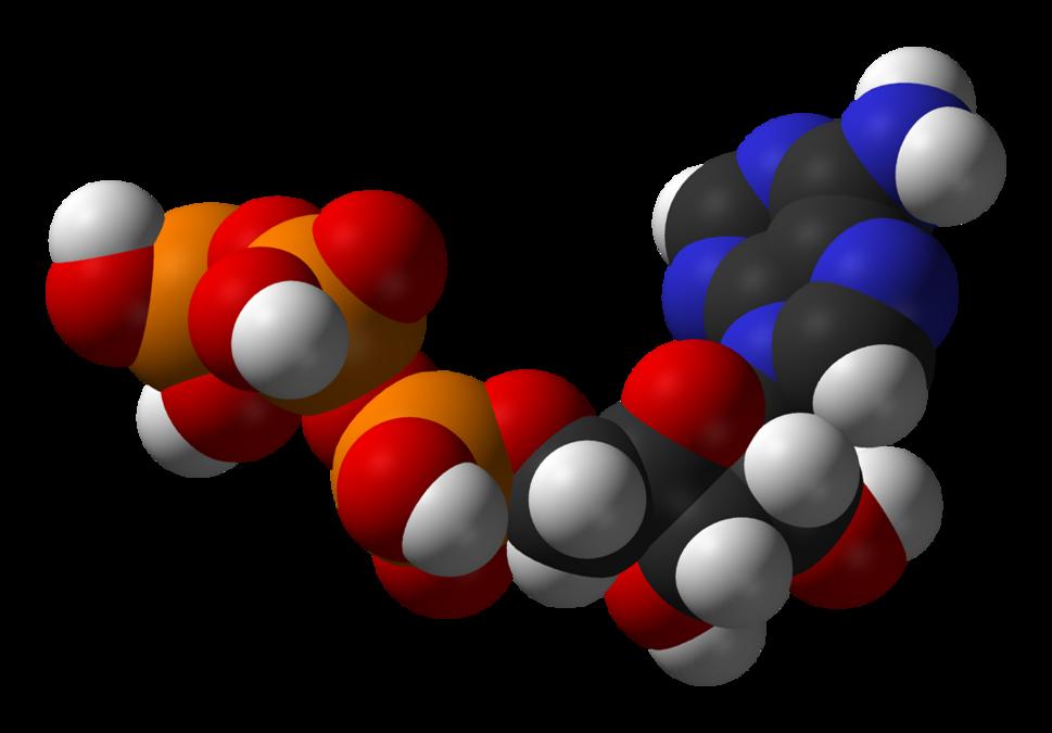ATP-3D-vdW