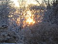 A Winter Sunset.JPG