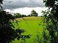 A large prehistoric tumulus near Brynsiencyn - geograph.org.uk - 890303.jpg