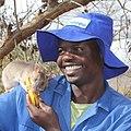 A man feeding a rat at the Apopo rat training in Tanzania.jpg