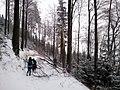 A steep hike - panoramio.jpg