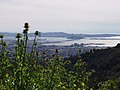 A view west from Tilden Regional Park.jpg