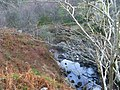 Achray Water and footbridge - geograph.org.uk - 1720028.jpg
