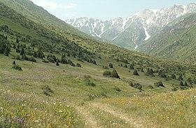 Аксу Джабаглинский заповедник Википедия aksu jabagly 2 jpg