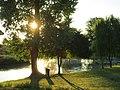 Alba d'estate sul fiume Stella a Titiano - panoramio.jpg