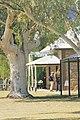 Alice Springs1450.jpg