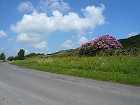 Alicehead Road.jpg