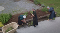 Amish women gardening.png