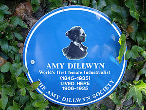 Amy Dillwyn - Amy Dillwyn, industrialist and novelist, author of The Rebecca Rioter, Jill and others