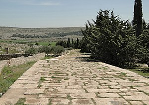 Qinnasrin - The ancient Roman road connecting between Antioch and Qinnasrin, then called Chalcis