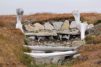 Whalebone used in the building of an ancient Thule home. Resolute. Ancient Thule Home.jpg