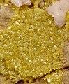 Andradite-Rhodochrosite-201255.jpg
