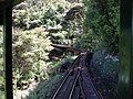 Approaching Driving Creek Railway No 7 bridge double-deck viaduct.jpg