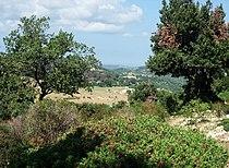 Apulia-Landscape02.jpg