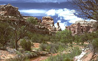 Cedar Mesa - Arch Canyon, Utah