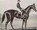 Archer (1856).jpg