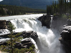 Athabasca Falls im August 2008