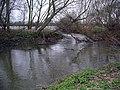 Attenborough Nature Reserve - geograph.org.uk - 735631.jpg