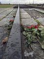 Auschwitz03.jpg